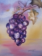 Purple grapes_9_13_sm